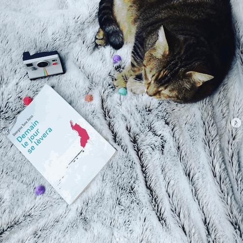 Le chat de Clothilde couve mon livre du regard